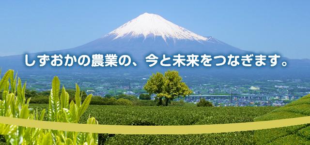 静岡の農業の、今と未来をつなぎます。